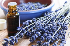 lavender-massage-oil